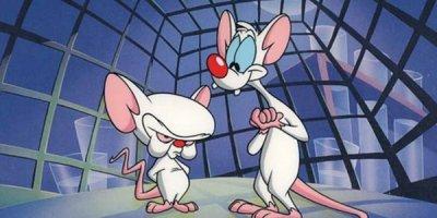 Pinky i Mózg tv serial animowany Seriale komediowe